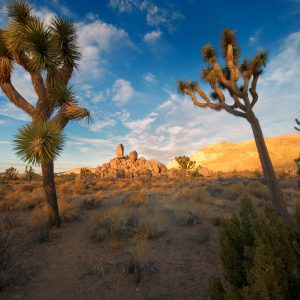7 Best Photography Road Trips from San Diego