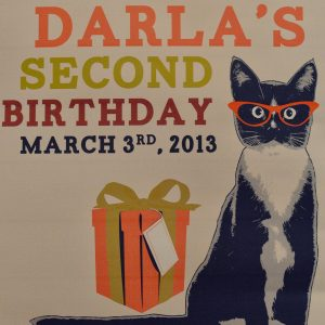 Are you Kitten?  Darla's Second Birthday!