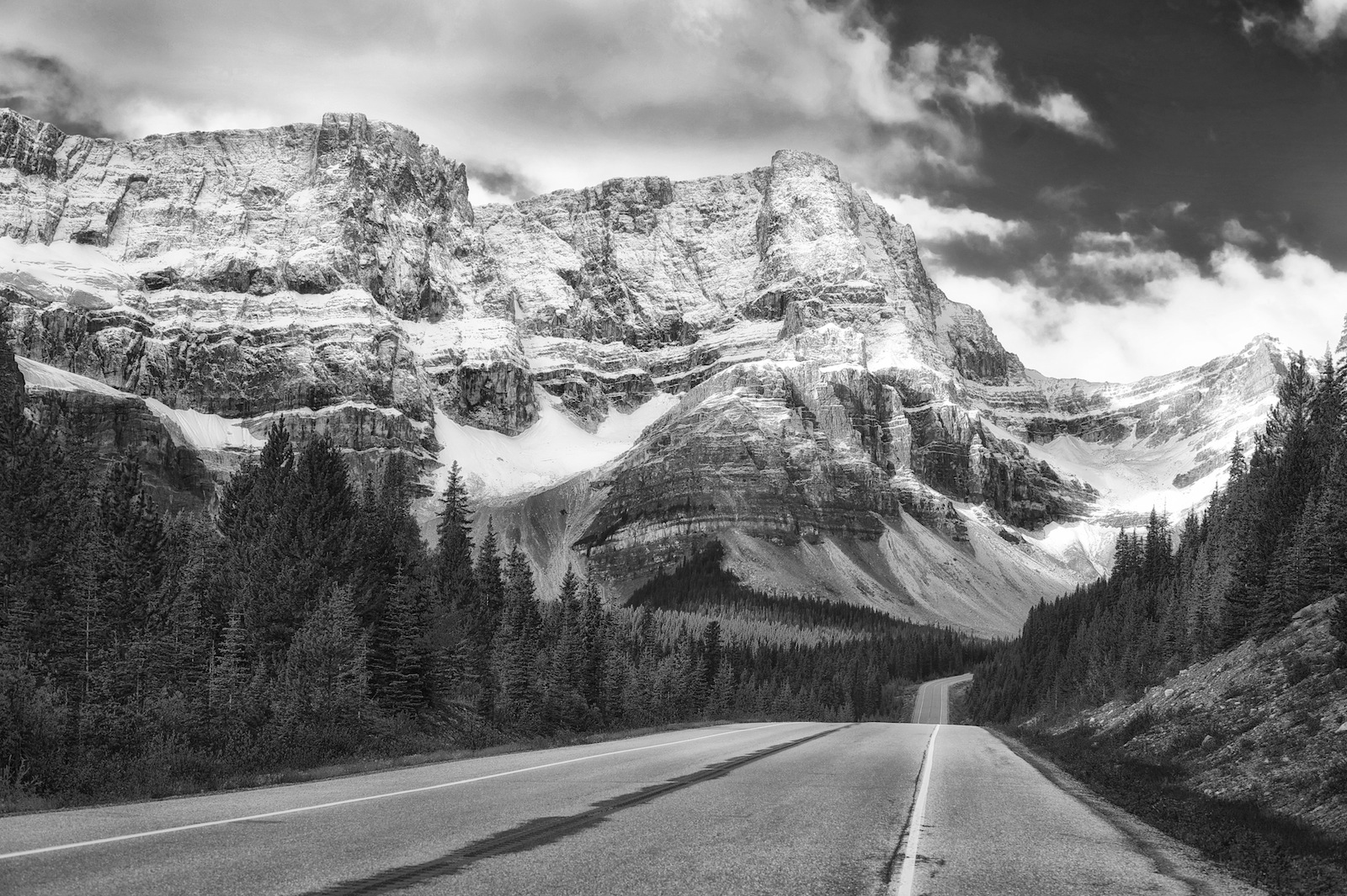 the life and career of ansel easton adams Ansel adams was an american photographer best known for his ansel adams full name ansel easton adams cite early life ansel adams was born in on.