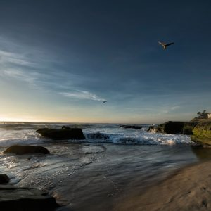 3 Beautiful Shots of La Jolla this Week