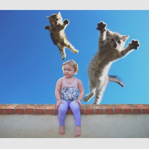 Darla and Some Flying Cats