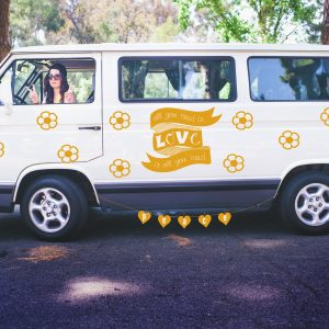 Lucy in the Van with Diamonds