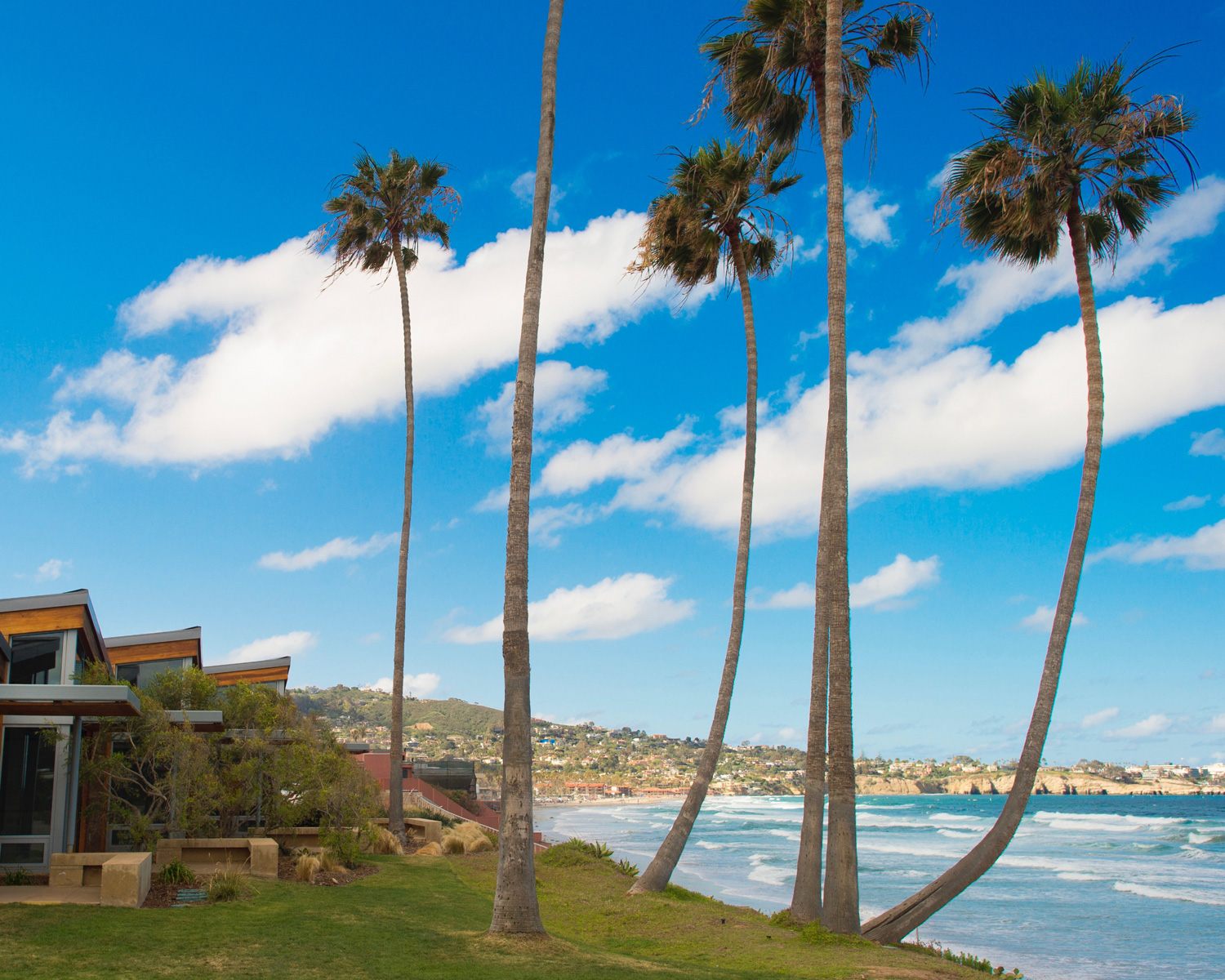 la-jolla-shores-beach-sd