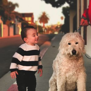Finny and The Doggy